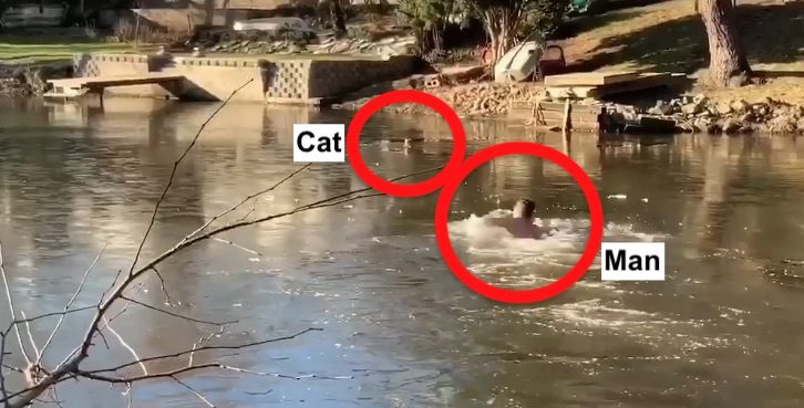Man rescues cat from frozen lake
