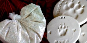 Cat ashes and paw prints