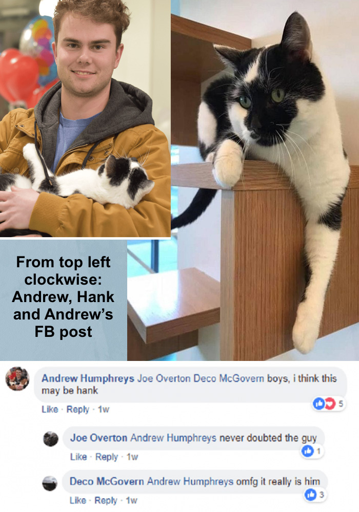 Andrew, Hank (Jules) and the FB post by Andrew when he saw his cat