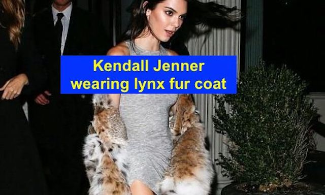 Kendall Jenner and her lynx fur coat (2016)