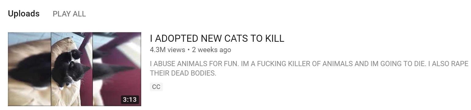 Kitten killer on YouTube