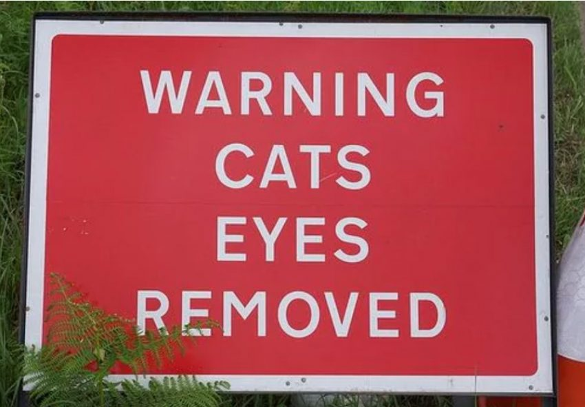 Warning cat's eyes removed