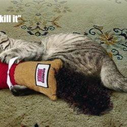 Cat grabbing toy as prey