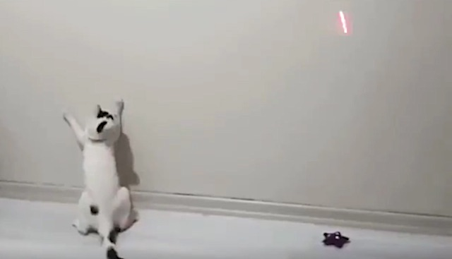 Laser pointers are limited