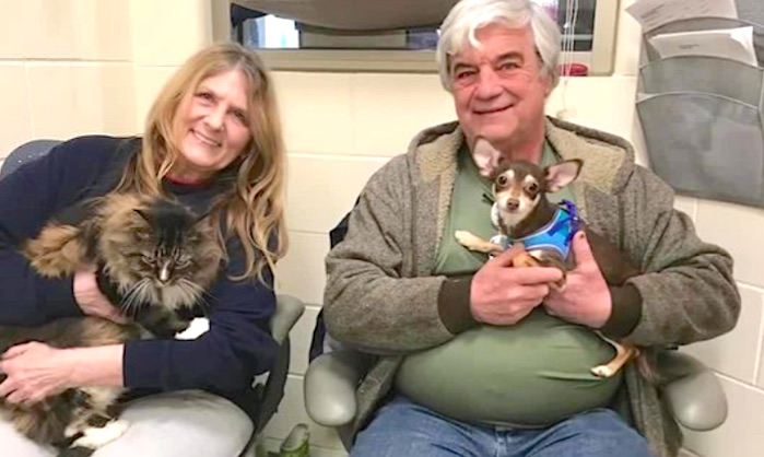 Cat and dog couple surrendered and adopted