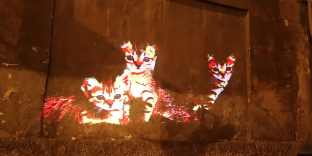 Cat art light projections in Rome delight the children and visitors.