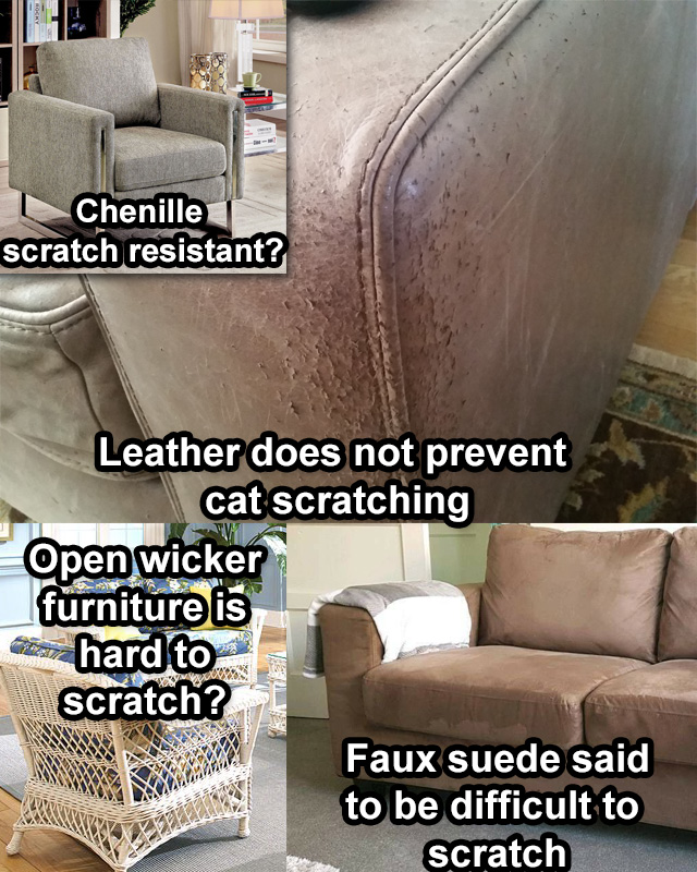 Furniture fabrics which are best for cat owners