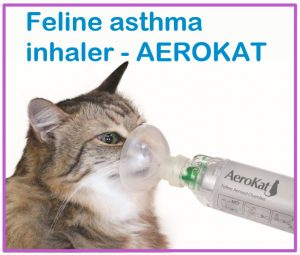 Feline asthma inhaler