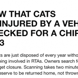 Government petition on cats in RTAs