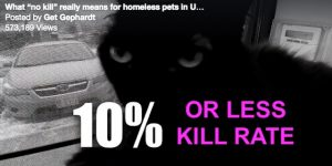 No-kill shelters