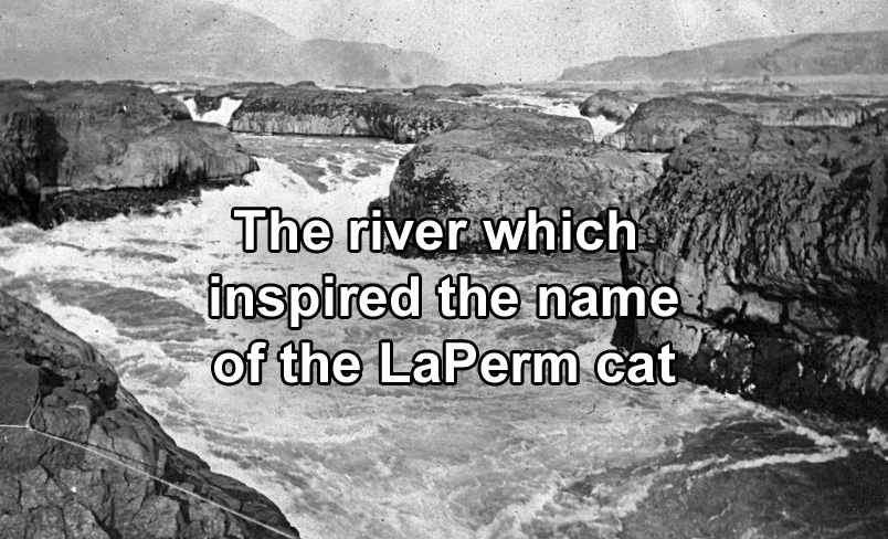 The river which inspired the name for the LaPerm cat