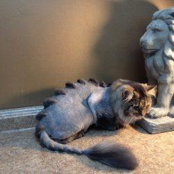 Domestic cat dinocut
