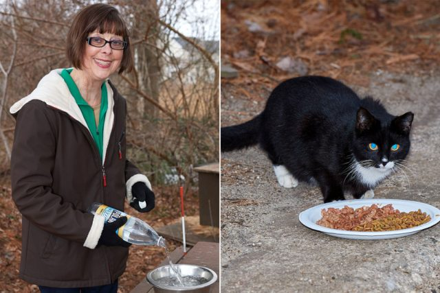 Maryann Hamilton and one of the seven cats