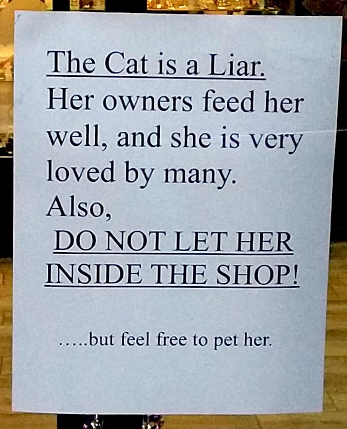 Cat branded a liar