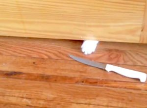 Cat pushes kitchen knife under bathroom door in protest when cat sitter goes to toilet