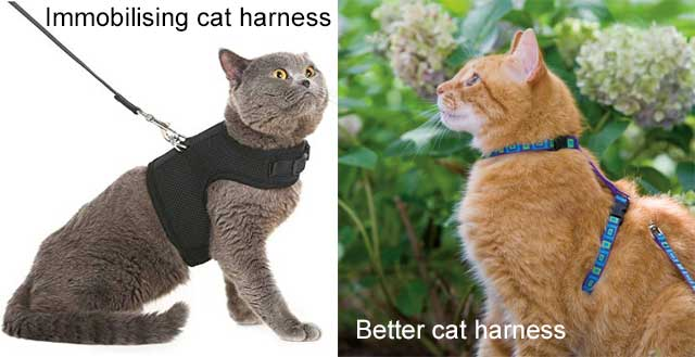 Good and bad cat harnesses
