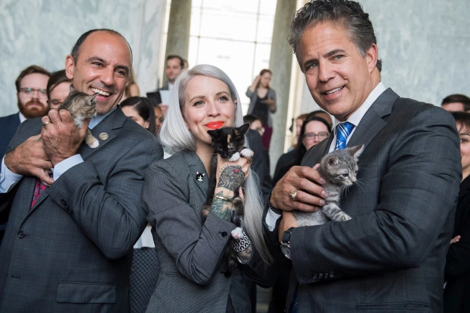 Reps. Jimmy Panetta, D-Calif., left, Mike Bishop, R-Mich., and Hannah Shaw
