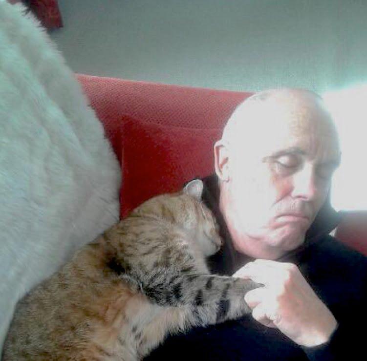 Stranger cat cuddles recuperating man