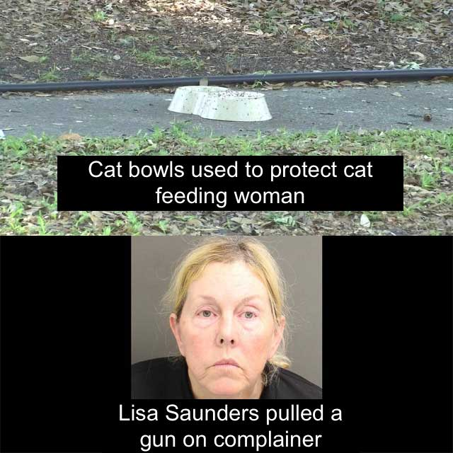 Two cat loving women who fought back