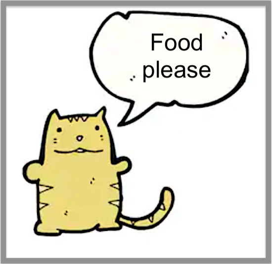 Cat asks for food