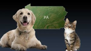 Discussion: Good or bad for state dog wardens to conduct dog license and rabies vaccination checks (including cats) in 23 Pennsylvania counties