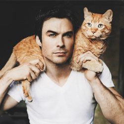 Ian Somerhalder with his cat who was deemed feral at a shelter