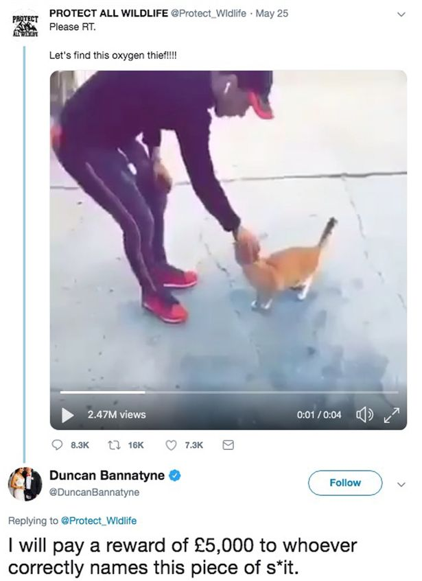 Duncan Bannatyne's offer of £5k reward to find cat abuser.