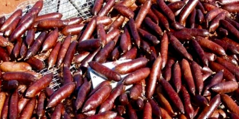 Australia's sausages contained poison - either 1080 or PAPP.