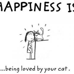 Happiness is being loved by your cat