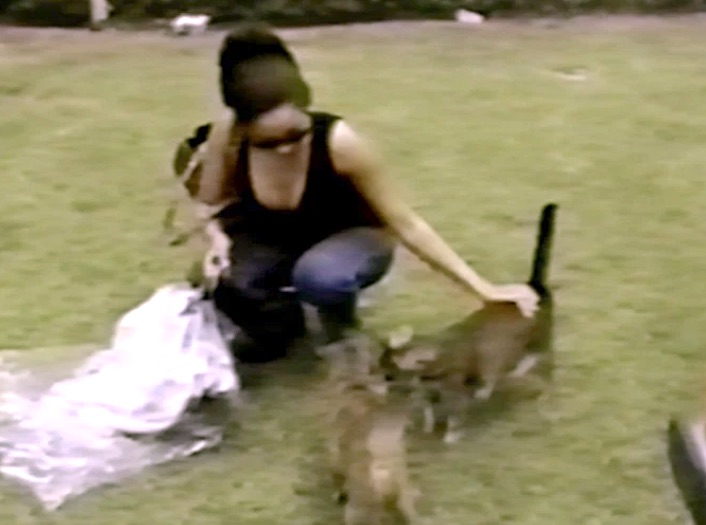 Cat Archie and Meghan are approached by another of her moggies. I believe that she is stroking Archie. Photo: Splash News.