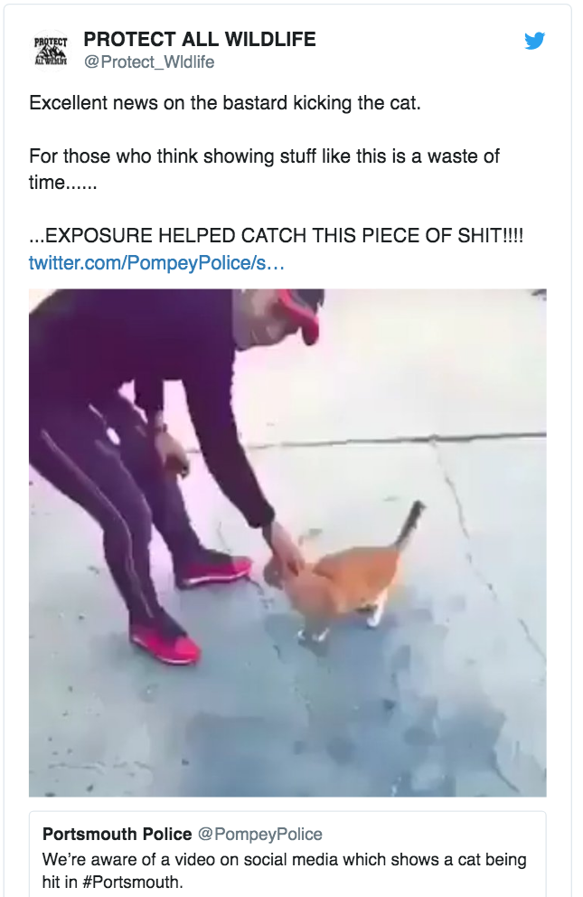 Tweet showing 15-year-old youth about to kick a cat