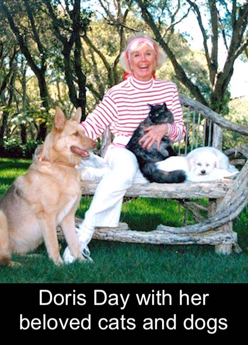 Doris Day was a great animal lover