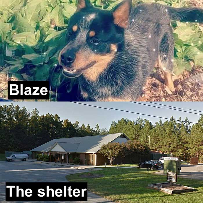 Blaze photo: Joey Varker. Shelter photo: Google street view.