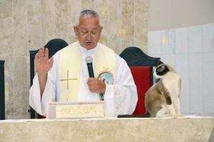 Church cat on altar during service