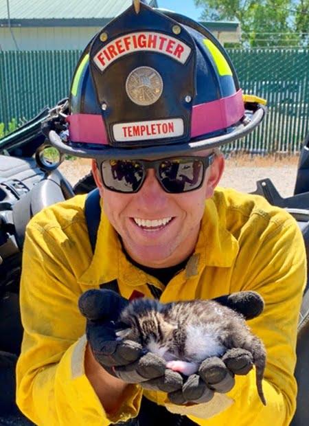 firefighter holding kitten