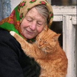 Cat to human unconditional love