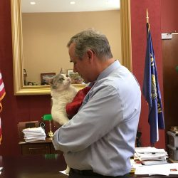 Sen. Jeff Merkley meets Delilah the cat in his office on Capitol Hill on July 25, 2019. Photo: Courtesy Office of Sen. Jeff Merkley