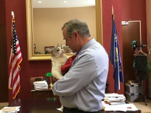 Sen. Jeff Merkley meets Delilah the cat in his office on Capitol Hill on July 25, 2019. Photo: Courtesy Office of Sen. Jeff Merkley