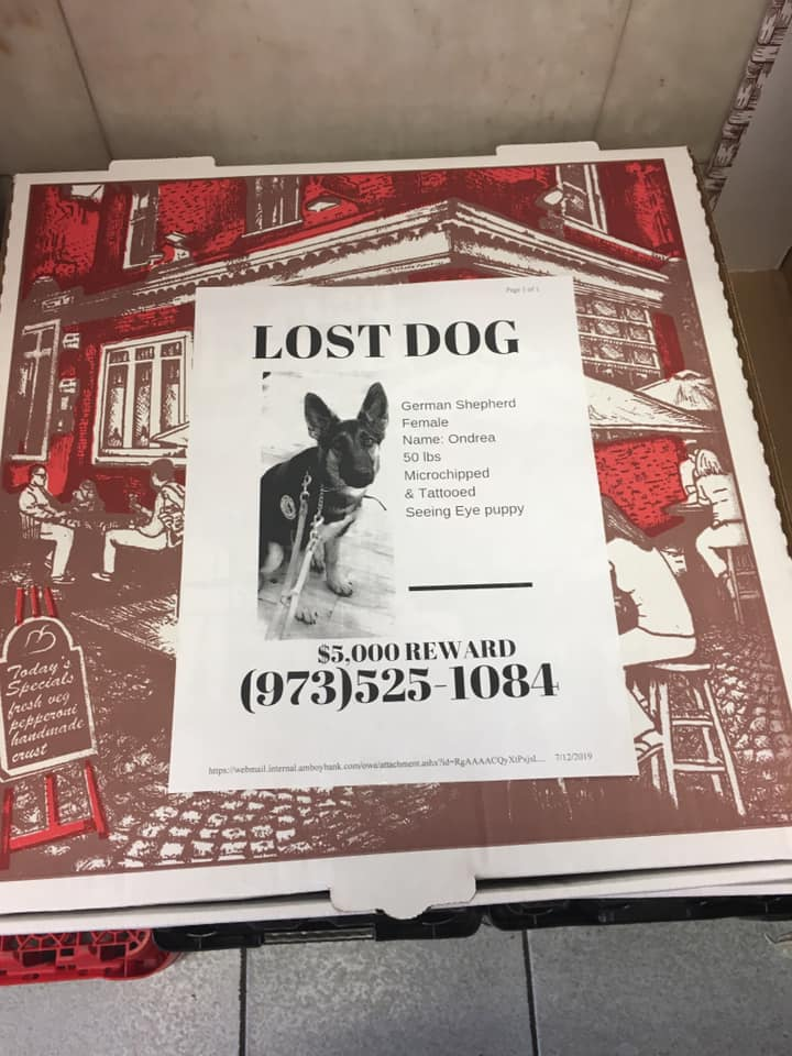 Lost per flyer on pizza box