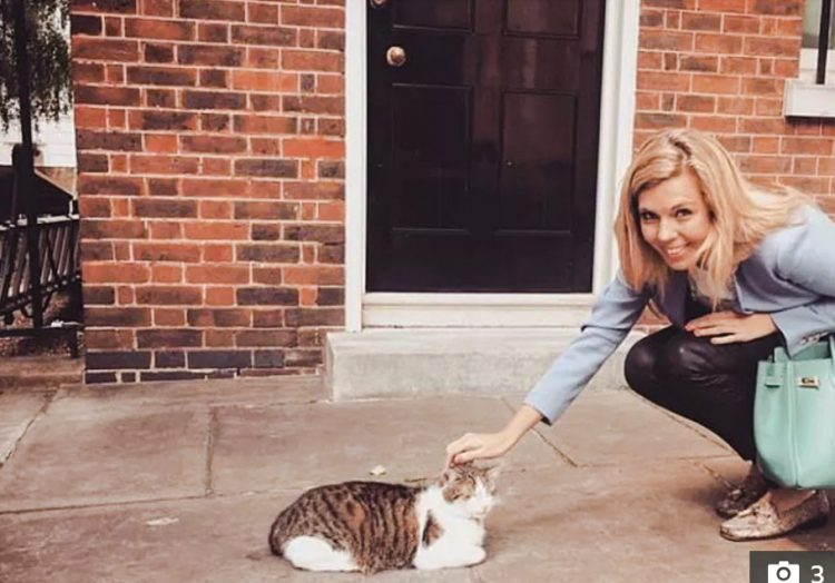 Carrie Symonds meets Larry the Cat