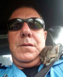 Heartwarming story of a Louisiana deputy who adopted a kitten he rescued during Hurricane Barry