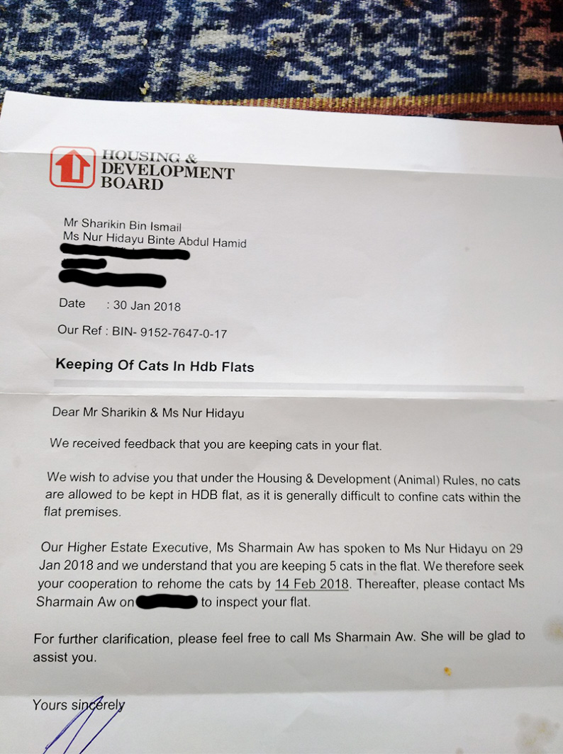 Letter from HBD Singapore telling residents to rehome their cats