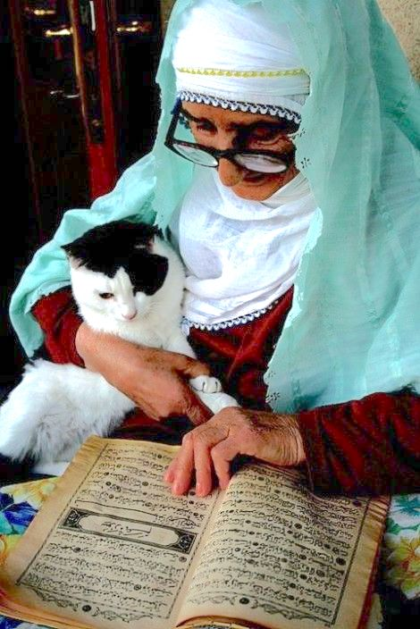Muslim lady and cat