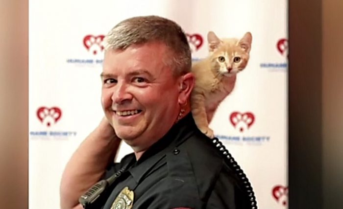 Police promote adoption of cats at Humane Society of Central Texas