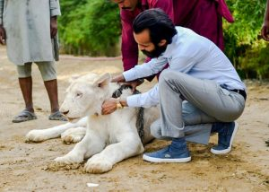 Rich Pakistani with his white lion