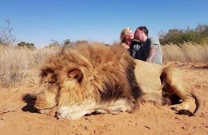 Sick photo of trophy hunting couple kissing over dead lion