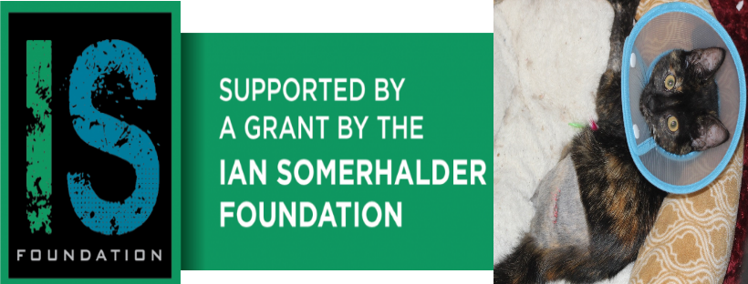Supported (in part) by a grant from the Ian Somerhalder Foundation