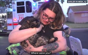 Cat rescued from house fire