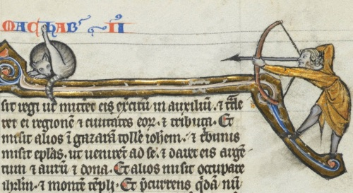Medieval cat butt licking