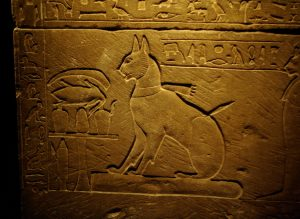 Cat drawing from Ancient Egypt. This is on the side of a sarcophagus